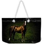 In The Corral 1 - Featured In Comfortable Art And Wildlife Groups Weekender Tote Bag