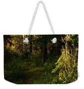 In The Druid Cathedral Weekender Tote Bag
