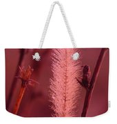In The Late Winter Cold Weekender Tote Bag