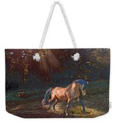 In The Light Weekender Tote Bag