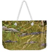 In The Reflection Weekender Tote Bag