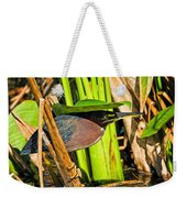 In The Shade Little Green Heron Weekender Tote Bag