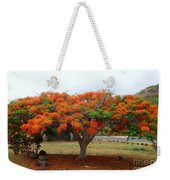 In The Shade Of The Poincianas Weekender Tote Bag