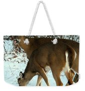 In The Snow At Sunset Weekender Tote Bag