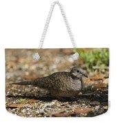 Inca Dove Weekender Tote Bag