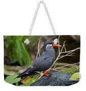 Inca Tern Weekender Tote Bag