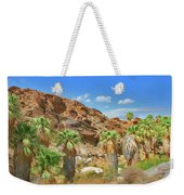 Indian Canyons View In Palm Springs Weekender Tote Bag
