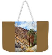 Indian Canyons View With Two Palms Weekender Tote Bag