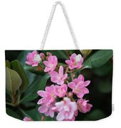 Indian Hawthorn Blossoms Weekender Tote Bag