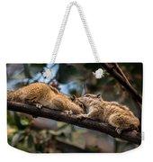 Indian Palm Squirrel Weekender Tote Bag