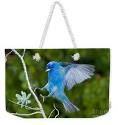 Indigo Bunting Alighting Weekender Tote Bag