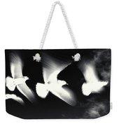 Infrared Gulls Weekender Tote Bag