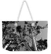 Infrared Tree Weekender Tote Bag