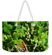 Inglenook Vineyard -10 Weekender Tote Bag