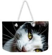 Inquisitive Kitty Weekender Tote Bag