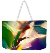 Insect Sized Weekender Tote Bag