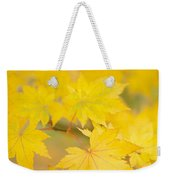 Intensely Yellow Weekender Tote Bag by Anne Gilbert