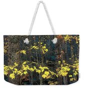Into The Fall Weekender Tote Bag