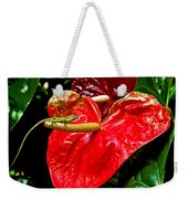 Into The Heart Weekender Tote Bag