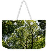Into The Trees Weekender Tote Bag