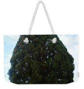 Iran Yazd Cedar Tree Weekender Tote Bag