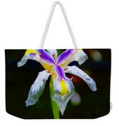 Iris 2012 Weekender Tote Bag