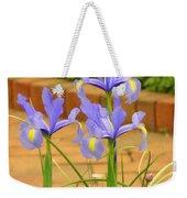 Iris Along The Walk Weekender Tote Bag