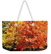 Is Autumn Already Weekender Tote Bag