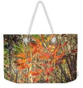 Is It Live Or Is It Memorex Weekender Tote Bag by Frozen in Time Fine Art Photography