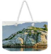 Island In A Lake, Glacier Bay National Weekender Tote Bag