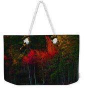 It Fall Time Again Weekender Tote Bag