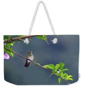 It's A Big World Out There... Weekender Tote Bag
