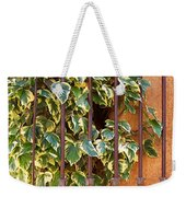 Ivy And Old Iron Gate Weekender Tote Bag
