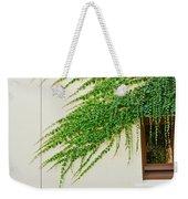 Ivy - Window Covered By Creeping Ivy. Weekender Tote Bag