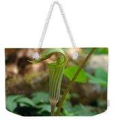 Jack-in-the-pulpit Arisaema Triphyllum Weekender Tote Bag