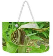Jack In The Pulpit - Arisaema Triphyllum Weekender Tote Bag