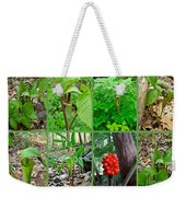 Jack-in-the-pulpit Wildflower    Arisaema Triphyllum Weekender Tote Bag