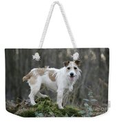 Jack Russell Dog In Autumn Setting Weekender Tote Bag
