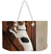 Jack Russell Terrier Gets Paper Weekender Tote Bag