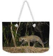Jaguar Cuiaba River Brazil Weekender Tote Bag