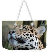 Jaguar Portrait Weekender Tote Bag
