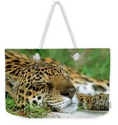 Jaguar Resting Weekender Tote Bag