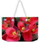 Jamaican Poinsettia Weekender Tote Bag