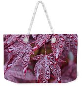 Japanese Acer Palmatum Atropurpurea Shrub Weekender Tote Bag