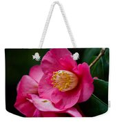 Japanese Camellia-the Official State Flower Of  Alabama Weekender Tote Bag