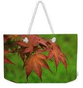 Japanese Maple Autumn Colors Weekender Tote Bag
