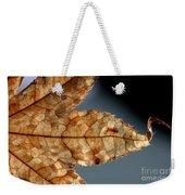 Japanese Maple Leaf Brown - 1 Weekender Tote Bag