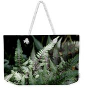 Japanese Painted Fern Weekender Tote Bag