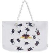 Japanese Rhinoceros Beetle Males Weekender Tote Bag
