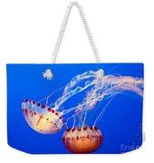Jelly Dance - Large Jellyfish Atlantic Sea Nettle Chrysaora Quinquecirrha. Weekender Tote Bag